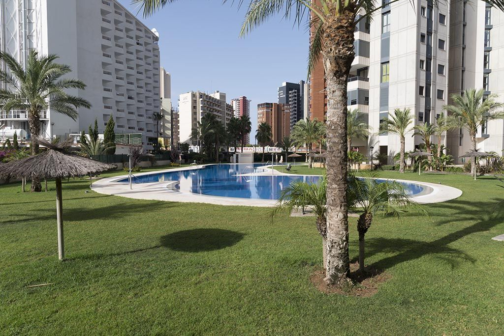 Apartments in Benidorm - Swimming pool Gemelos 26